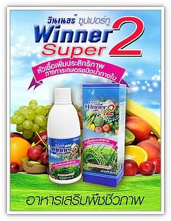 Winner Super 2